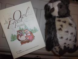 Book and Owl Plush Set-final image 1